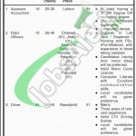 Sir Ganga Ram Hospital Jobs