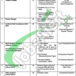 University of Education Jobs
