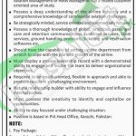 Jobs in PIA Karachi April 2016 For Director Customer Care Eligibility Criteria