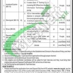 Pakistan Manpower Institute Jobs