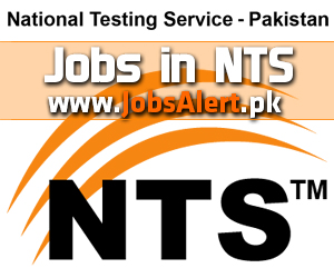 Jobs in National Testing Service