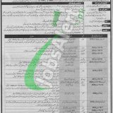 Pakistan Defence Security Force Jobs