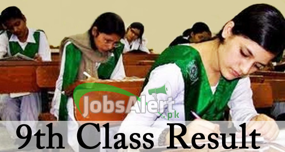 9th Class Result 2013