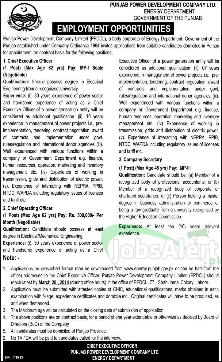 Govt. Jobs in Punjab Power Development Company Ltd Lahore
