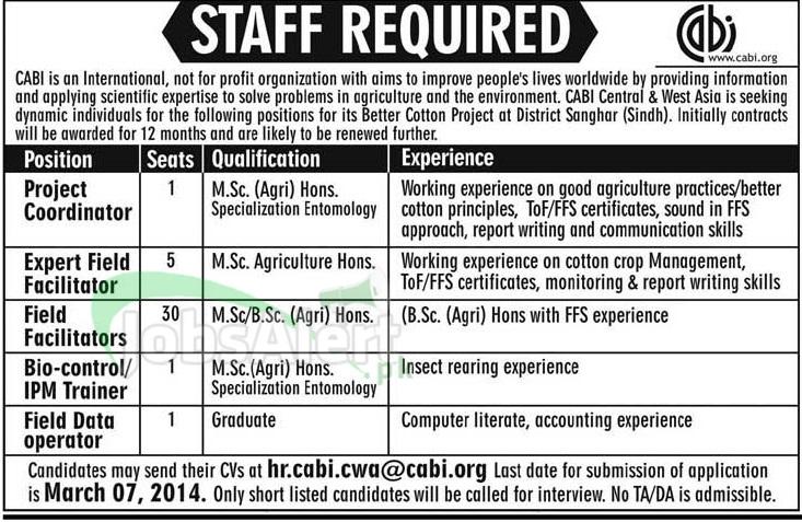 Project Coordinator Jobs in CABI International Organization Sindh
