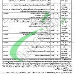 Session Court Chiniot Jobs