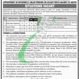 Sindh Teacher Education Development Authority Jobs