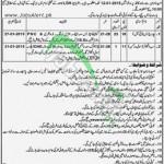 Lahore General Hospital Govt Jobs Opportunities 2014 Male & Female