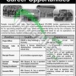 PLDDB Lahore Jobs 2014 Eligibility Criteria Apply Online