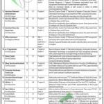 Pakistan Industrial Technical Assistance Centre