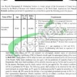 Board of Revenue Punjab Lahore Jobs