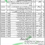 Benazir Bhutto Hospital Rawalpindi Jobs
