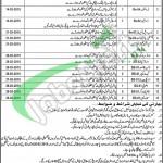 Govt Said Mitha Hospital Lahore Jobs