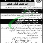 Jobs in Karachi Shipyard & Engineering Works Ltd
