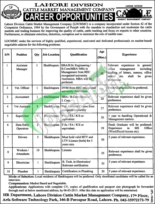 Lahore Division Cattle Market Management Company Jobs