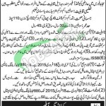 Mujahid Force Pakistan Jobs
