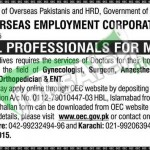 Overseas Employment Corporation Jobs