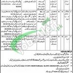 Population Welfare Department Punjab Lahore Jobs