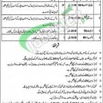 Jobs in Livestock Department Punjab Rawalpindi