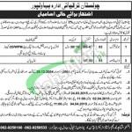 Cholistan Development Authority Bahawalpur Jobs