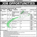 Govt Jobs in Gilgit Baltistan