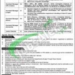 NPGCL Muzaffargarh Jobs