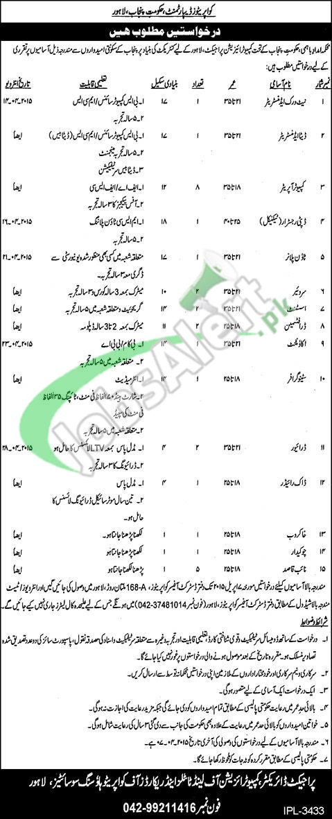 Cooperative Department Punjab Jobs