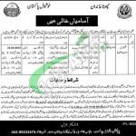 Population Welfare Department Punjab Jobs