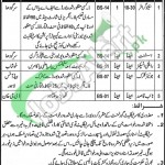 Jobs in Mines and Mineral Department Punjab
