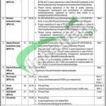 Pakistan National Accreditation Council (PNAC) islamabad Jobs