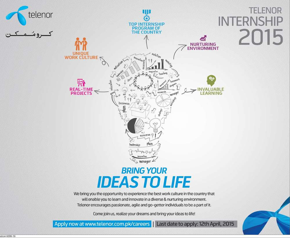 Telenor Internship Program