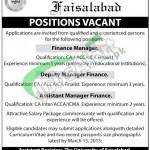 The University of Faisalabad Jobs