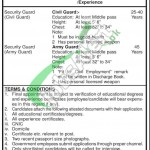 Jobs in King Edward Medical University Lahore