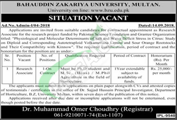 BZU Multan Jobs