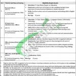 Punjab University Jobs
