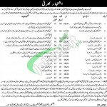 Jobs in Mines and Minerals Department Punjab
