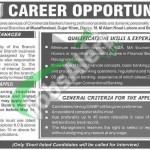 Jobs in Khyber Bank
