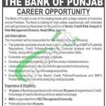 Jobs in Bank of Punjab