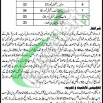 Higher Education Department Punjab Jobs