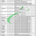 Jobs in Civil Hospital Karachi