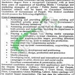 Information & Culture Department Lahore Jobs