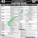 Overseas Pakistani Foundation Jobs