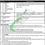 Jobs in University of Education Lahore