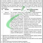 UET Peshawar Jobs