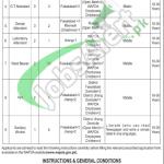 Jobs in Wapda Hospital Faisalabad