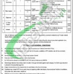 WAPDA Hospital Gujranwala Jobs