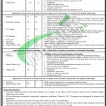 Civil Hospital Bahawalpur Jobs