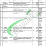 KPK Employees Social Security Institution Jobs