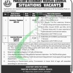 PVMC Pakistan Jobs