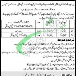 Government Dyal Singh College Lahore Jobs